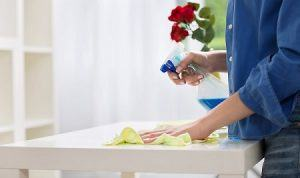 domestic cleaning in holland park