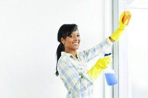 Domestic Cleaning in Kingston