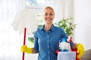 domestic cleaners in paddington